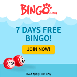 Bingo.com Exclusive Promotions