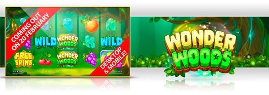 Нова гра: Wonder Woods ™